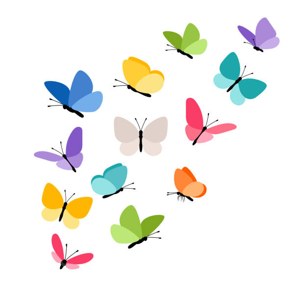 Butterflies in flight Butterflies in flight. Colorful tropical butterfly decorative elements on white for design, vector illustration fly insect stock illustrations