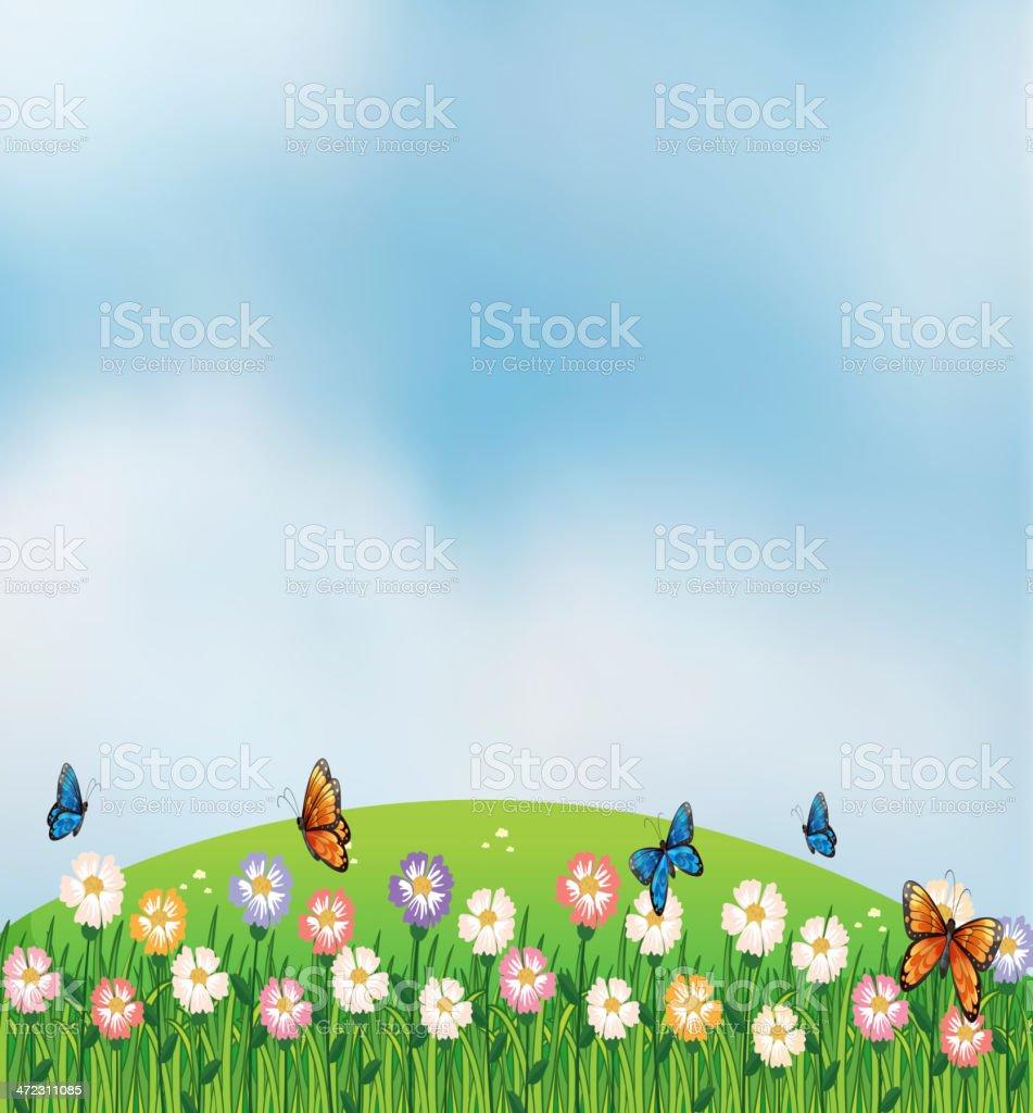 Butterflies in garden at the top of hills vector art illustration