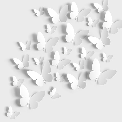 Butterflies paper cut on white background.