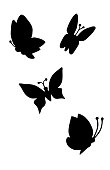 Butterflies silhouette black and white drawing.