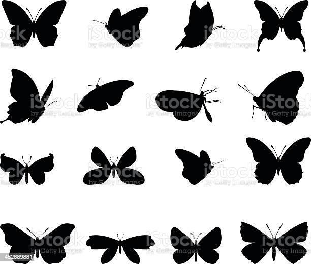 Butterflies silhouette vector id482689881?b=1&k=6&m=482689881&s=612x612&h=b4lf ejy ecq6z9uh7i1d4 dhsqwzjyivvk1ttutpce=