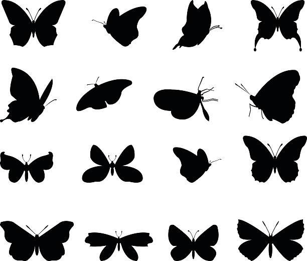 Silhueta de borboletas - ilustração de arte em vetor