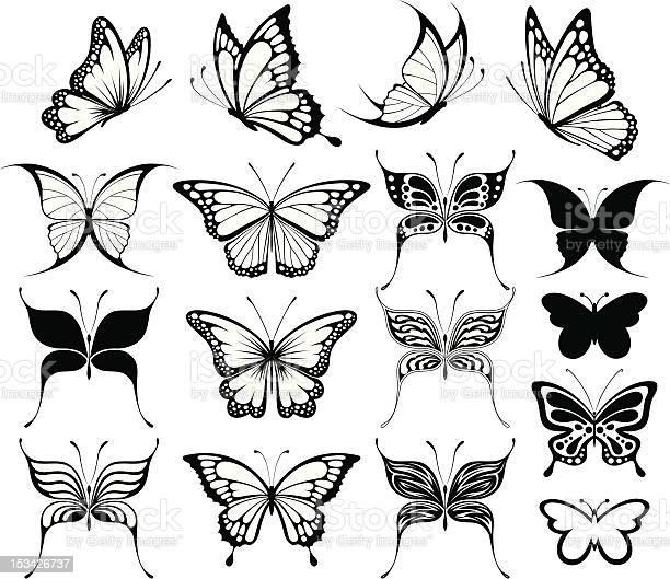 Butterflies silhouettes vector id153426737?b=1&k=6&m=153426737&s=612x612&h=kcytpttcbb3vzcpwsw6jzkbenq 9xhvbc0bfybzjsq0=