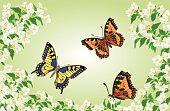 Butterflies Swallowtail and Vanessa in jasmine trees vector