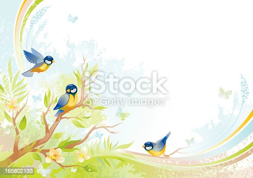Butterfly and birds background with beautiful swirls, tree branch with fresh leafs and copyspace.