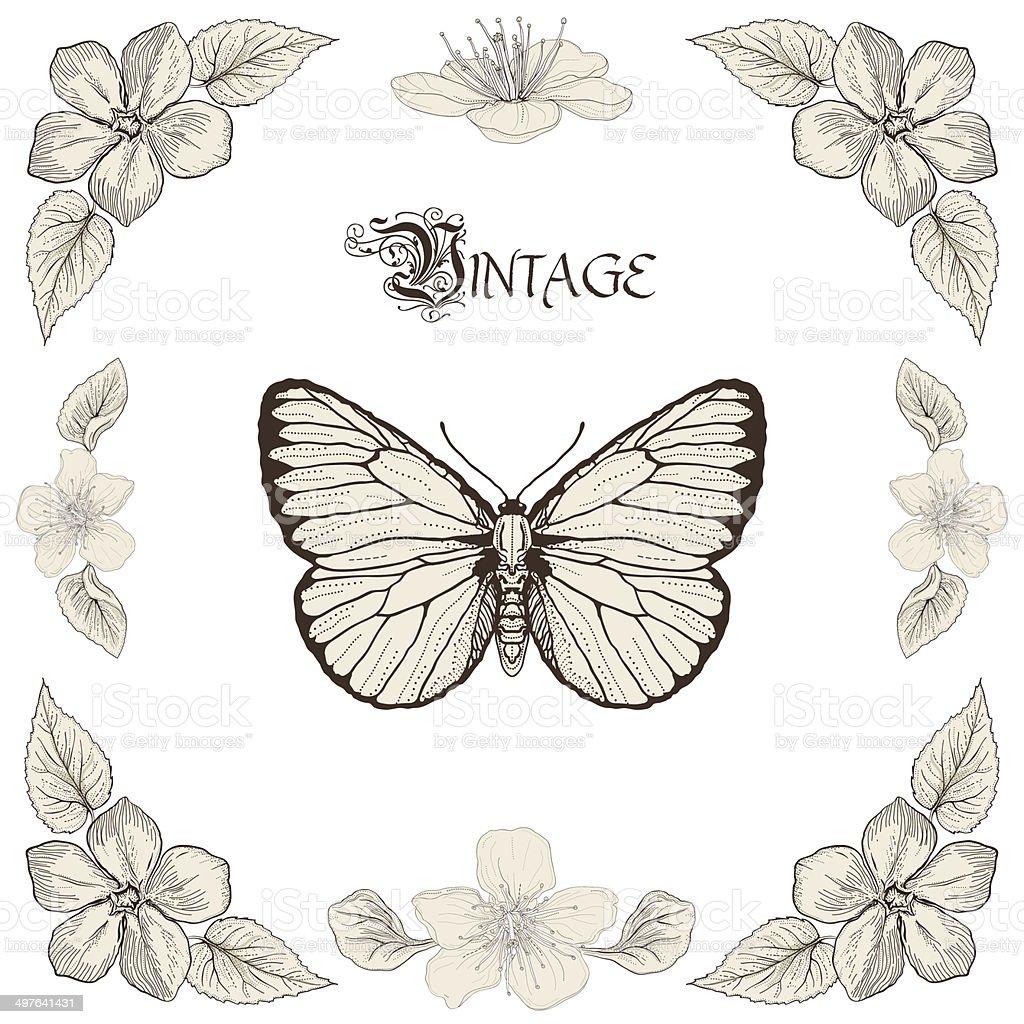 Ilustración De Mariposa Y Flores Vintage Grabado Estilo De Dibujo Y