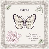 hand drawing butterfly rose buds and leaves with decorative frame vintage engraving style