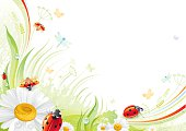 Butterfly background with beautiful swirls, leafs, blue dragonflies and copyspace. Red ladybugs and daisy.