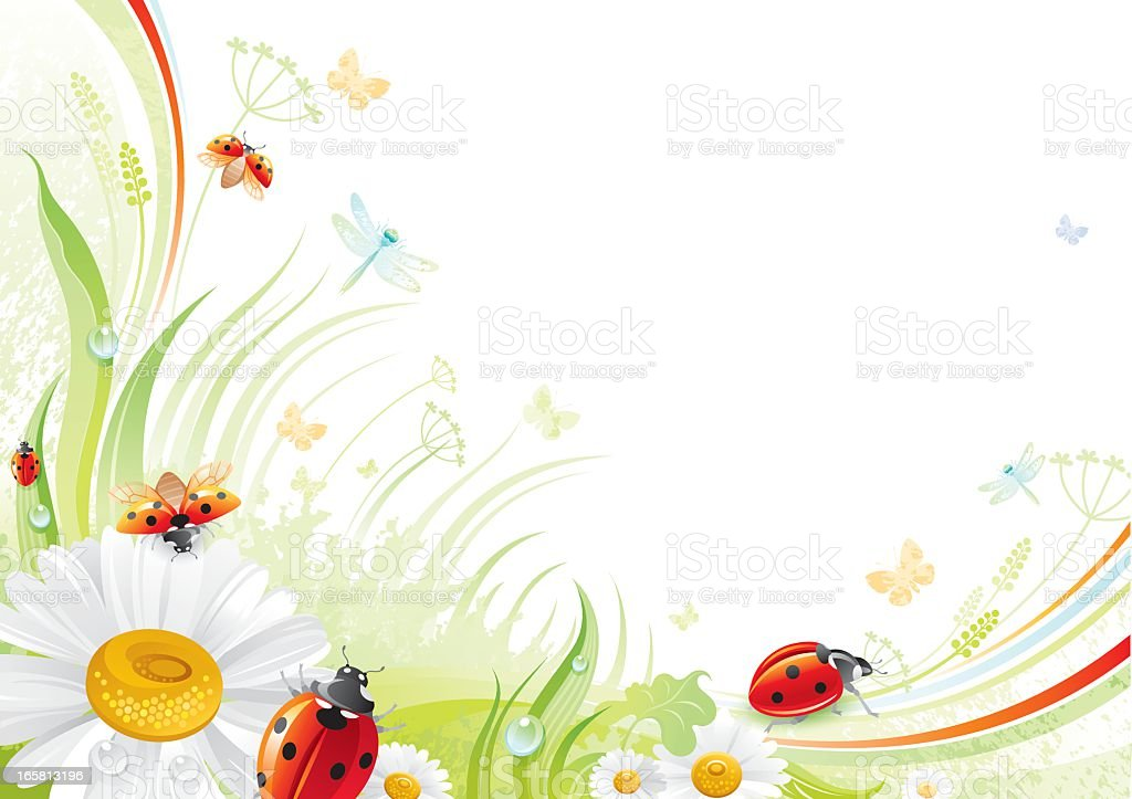 Butterfly background with copyspace: ladybug and daisy vector art illustration