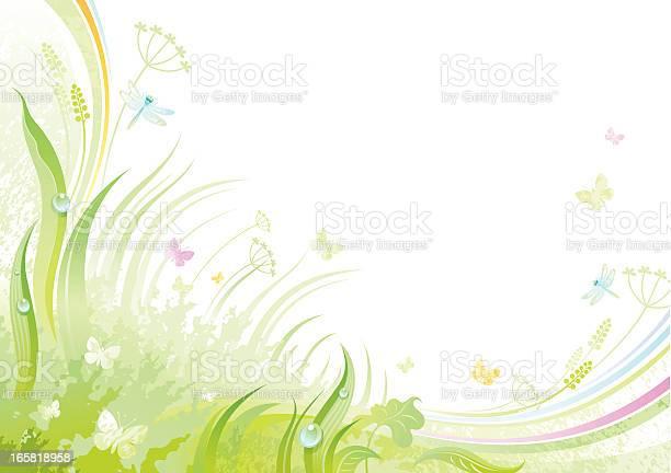 Butterfly background with copyspace vector id165818958?b=1&k=6&m=165818958&s=612x612&h=qmajybfjpsx6jc8ze czyu13ullzg wnvvnxqgrirlo=