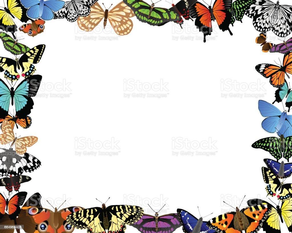 Schmetterling-Grenze – Vektorgrafik
