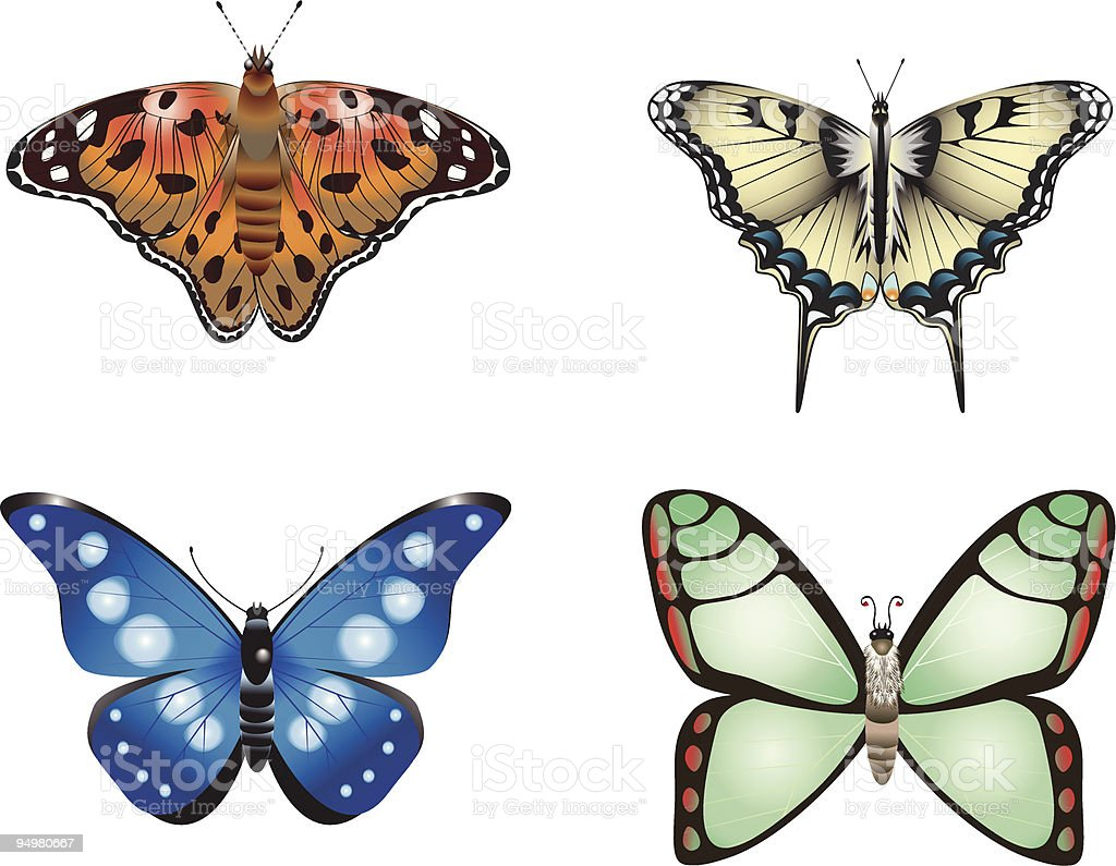 Butterfly collection royalty-free stock vector art