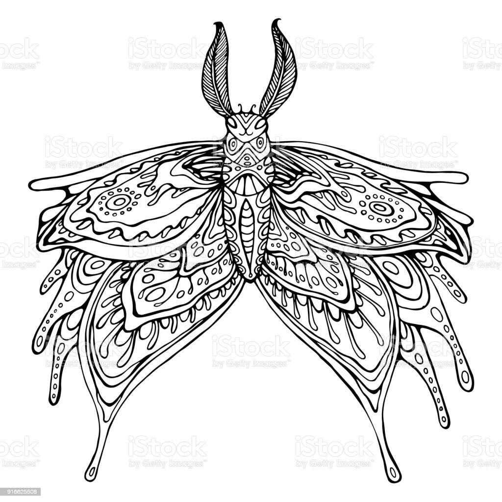 Schmetterling Malvorlagen Für Kinder Und Erwachsene Stock Vektor Art