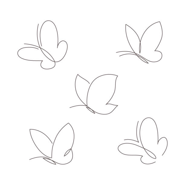 Butterfly continuous line vector illustration set. Collection of butter fly made with single editable path. Butterfly continuous line vector illustration set. Collection of butter fly made with single editable path. Modern continuous line drawing of simplicity butterflies silhouette for logo and tattoo. butterfly stock illustrations