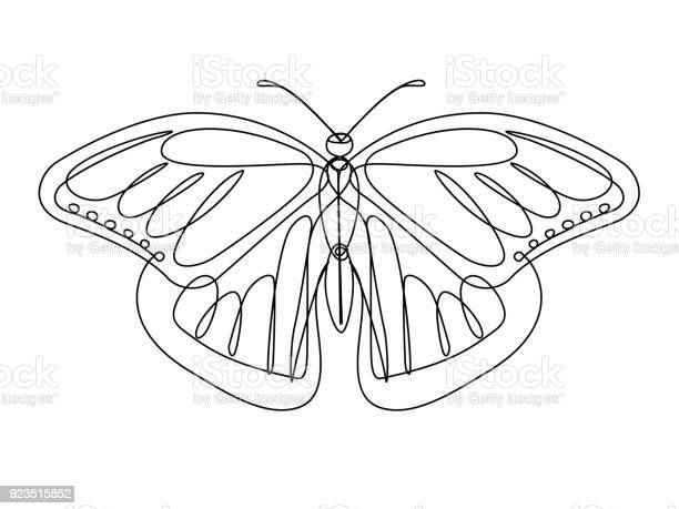 Butterfly continuous line vector vector id923515852?b=1&k=6&m=923515852&s=612x612&h=98mq3ecwrqlho5yycrkheopvnqsa7iy6hsd1b6ohggg=