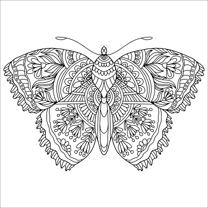 butterfly drawn on a white background with abstract flowers and ornaments for coloring, vector