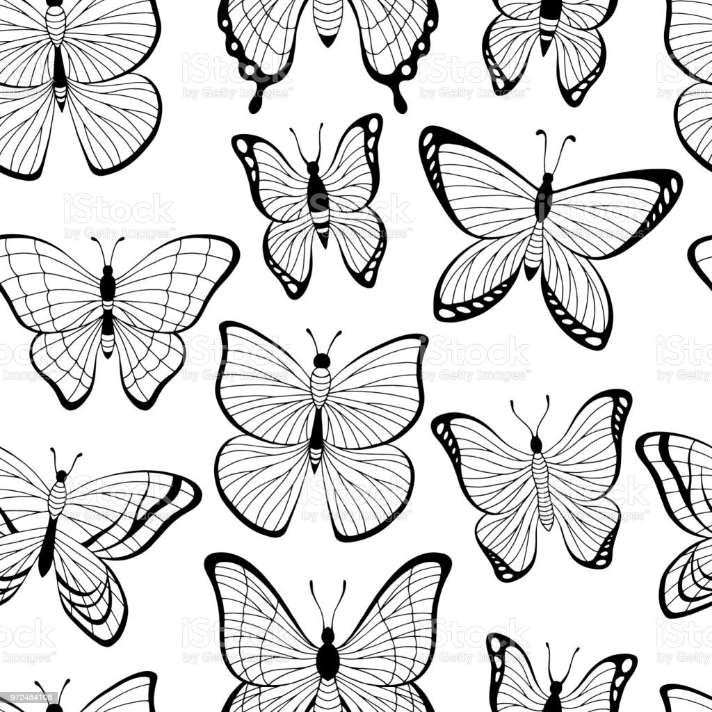 Butterfly Graphic Black White Seamless Pattern Background Sketch Illustration Vector Royalty Free