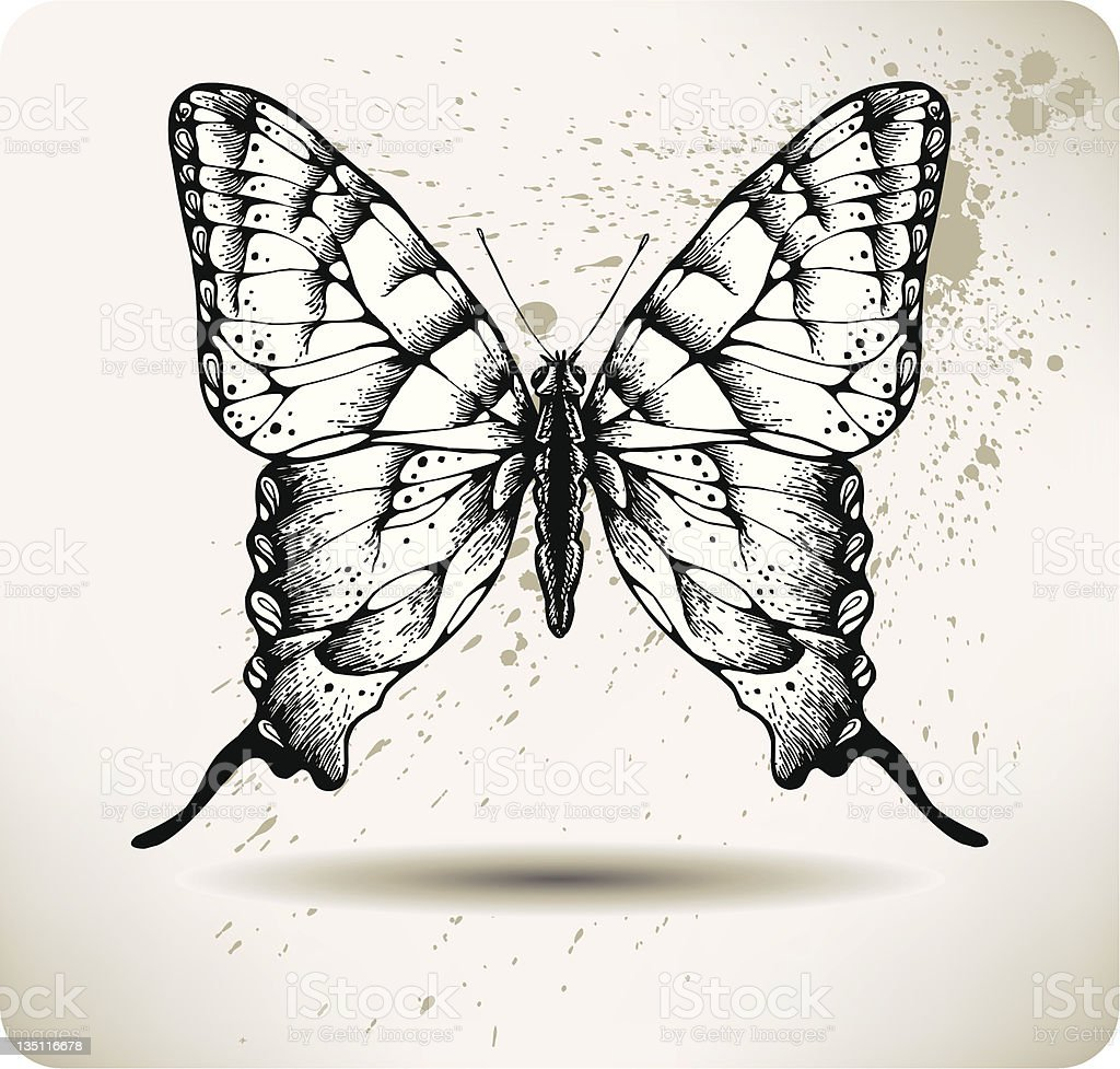 Butterfly hand drawing. vector royalty-free butterfly hand drawing vector stock vector art & more images of animal