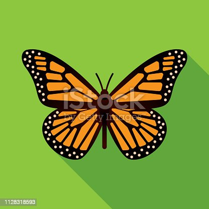 Vector illustration of a monarch butterfly against a green background in flat style.