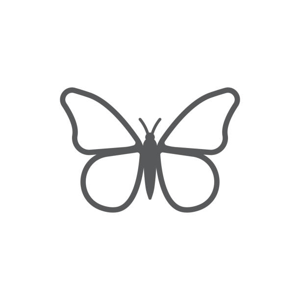 butterfly icon. - butterfly stock illustrations
