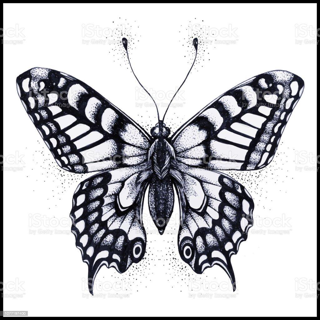 蝶のイラストベクトル タトゥー蝶 イラストレーションのベクターアート