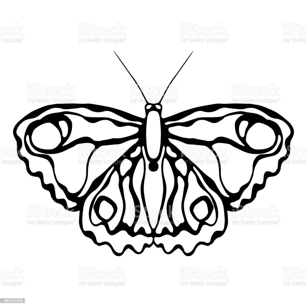 Ilustración De Mariposa Aislado Sobre Fondo Blanco Diseño De La