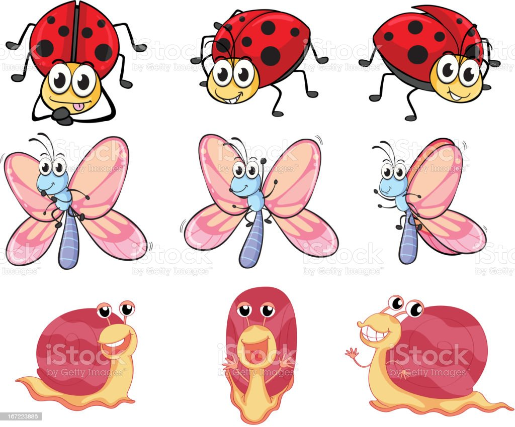 Butterfly, ladybug and snail royalty-free stock vector art