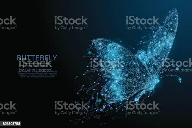 Butterfly low poly blue vector id853803798?b=1&k=6&m=853803798&s=612x612&h=pcxxb3mz2wkpq3aa5l vwovel0lyn0xwjsaaxf4ug1g=