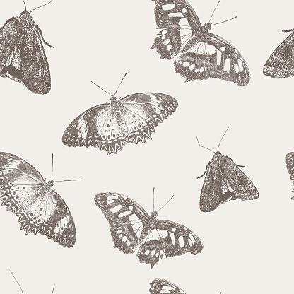 Butterfly Mono Seamless Repeat Pattern