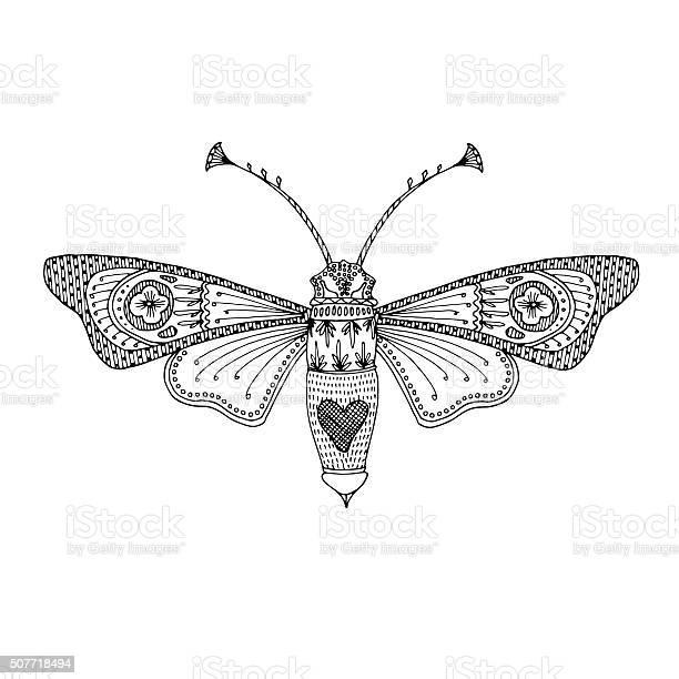 Butterfly moth black handdrawn adult coloring book design vector id507718494?b=1&k=6&m=507718494&s=612x612&h=qfpomvgqrl6tcjfm26ykxkvejeh4mz6tvunjillfloq=