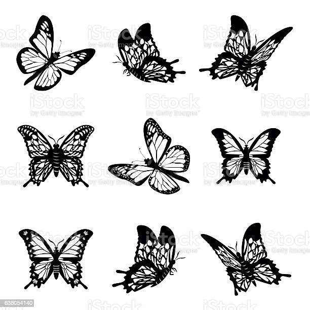 Butterfly of silhouette icon set vector illustration vector id638054140?b=1&k=6&m=638054140&s=612x612&h=llc01v2sxj5nuxszlvcqywyhuy37lk5f0y5yzvxnizq=