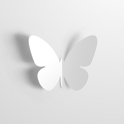 Butterfly Origami with white paper