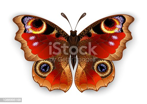 Red, realistic, artistically painted, Butterfly peacock eye on white background.