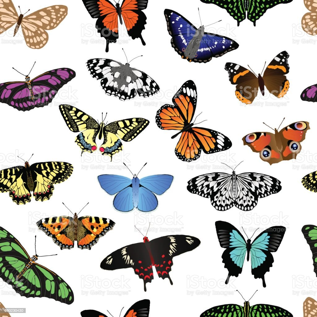 Butterfly Repeating Background – Vektorgrafik