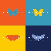 Butterfly. Set of colorful design elements