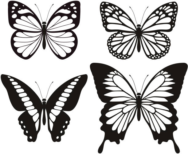 butterfly silhouette icons set. - butterfly stock illustrations