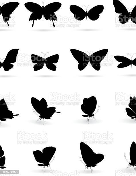 Butterfly silhouette vector id165788872?b=1&k=6&m=165788872&s=612x612&h=ho8lnaxqrgu9 d5yxsl6kwqpqfvawjoatvwqhxjaiw4=