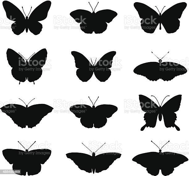Butterfly silhouettes vector id455459469?b=1&k=6&m=455459469&s=612x612&h=nry6lo1ptedlsb6sk1ssqmo7hh54aff9j9k z3 2hhc=