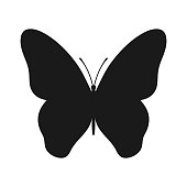 Butterfly icon. Graphic symbol butterfly. Isolated black silhouette on white background. Vector illustration