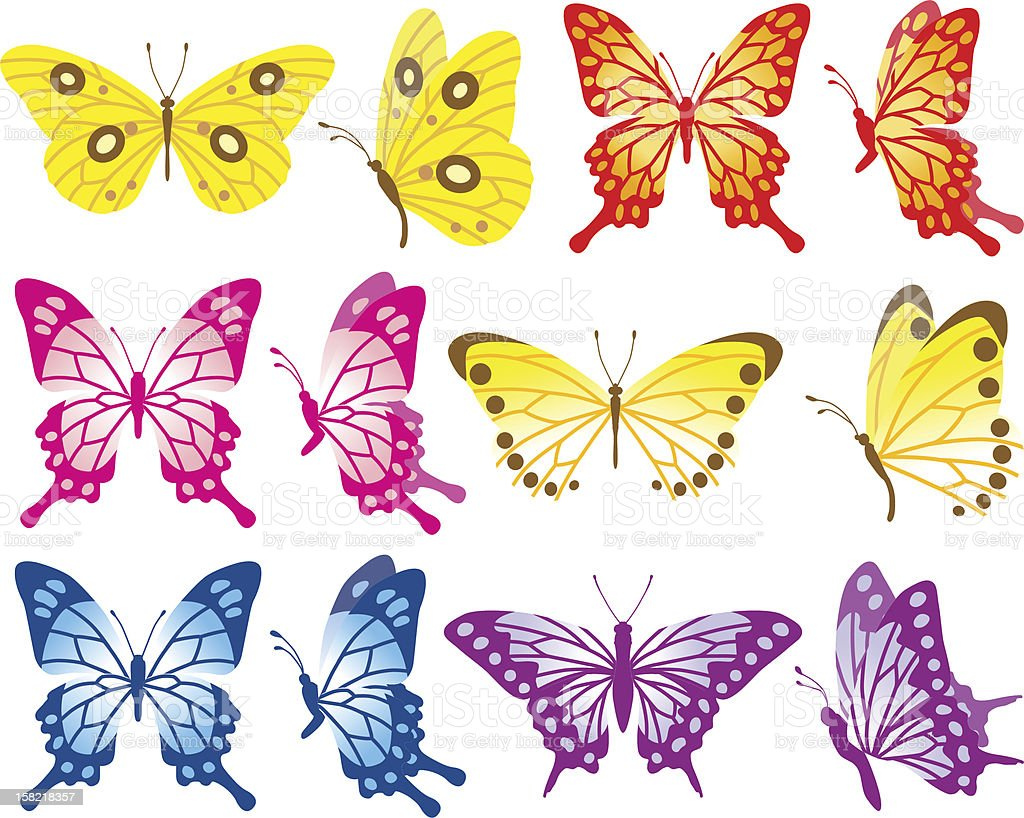 Butterfly Variety Set Stock Illustration Download Image Now Istock