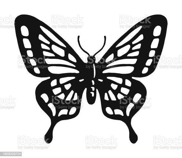 Butterfly vector id1003203724?b=1&k=6&m=1003203724&s=612x612&h=iltobo5b2oy icvh egiubxhk7t8pbtexhrchw4ase0=