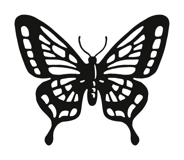 butterfly - butterfly stock illustrations