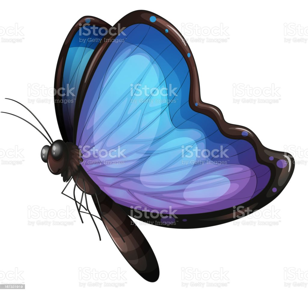 Butterfly royalty-free butterfly stock vector art & more images of animal antenna