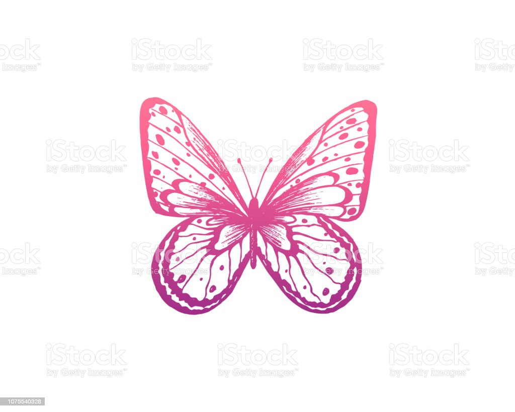 Image result for butterfly logo