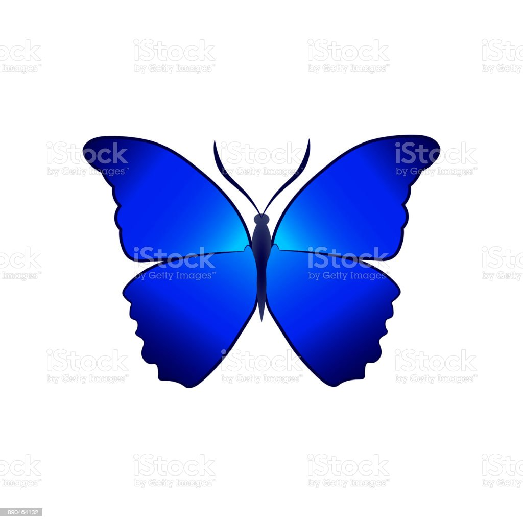 Butterfly vector illustration isolated on a white background vector art illustration