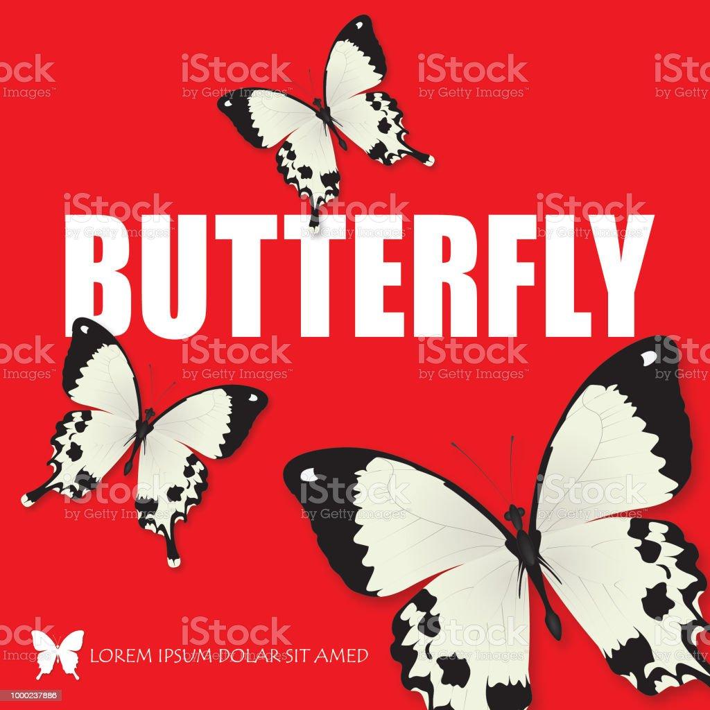 Vector de mariposa con thypography - ilustración de arte vectorial