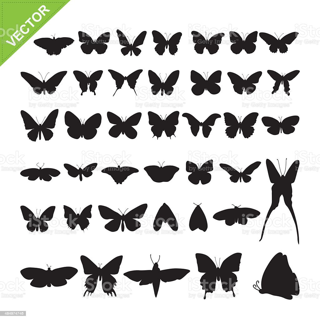 Butterflyl silhouettes vector vector art illustration