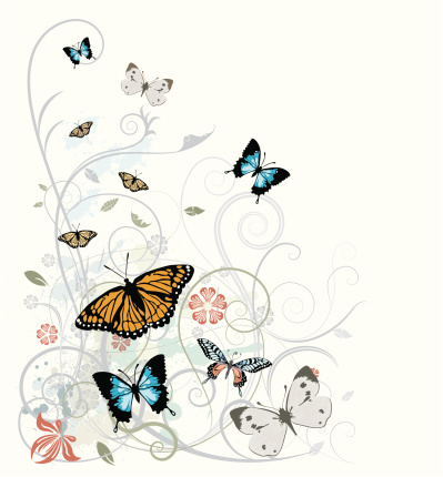 Butterfly's and ornaments