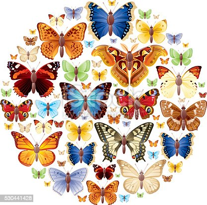 Butterflies icon set in circle.  EPS-10 (no transparent elements),