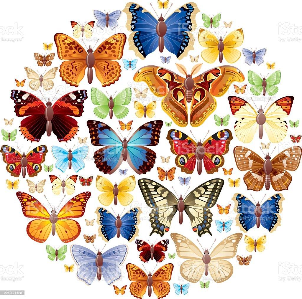 Butterlies Conjunto de ícones - ilustração de arte em vetor